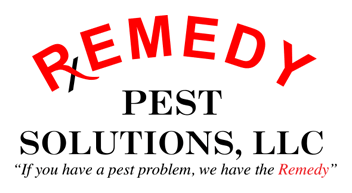 REMEDY Pest Solutions